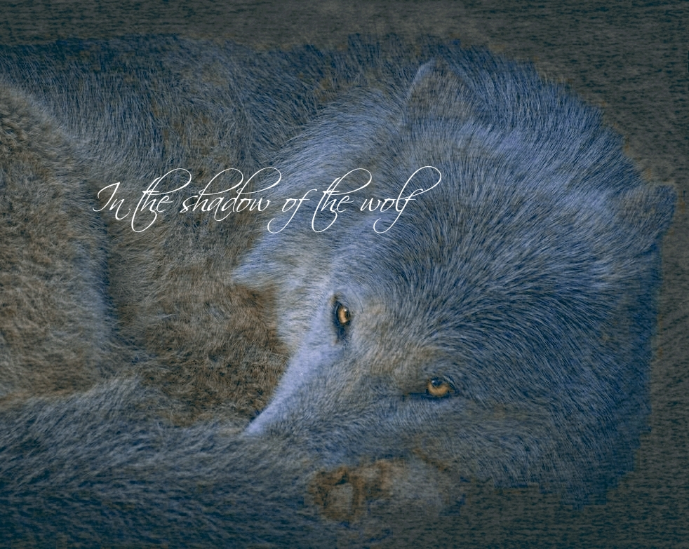 Greeting Cards – intheshadowofthewolf
